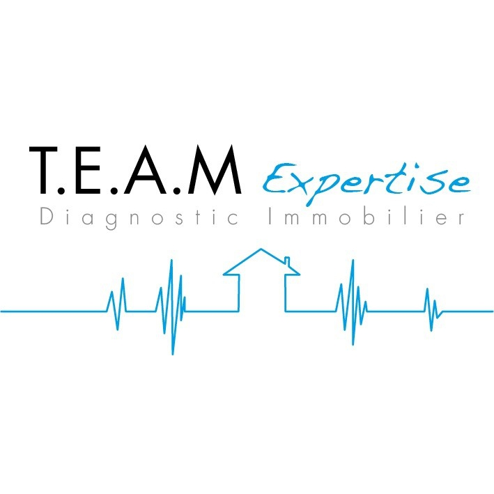 Logo TEAM EXPERTISE